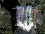 Woodland colour - Sept 2011
