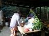 taste-the-wild-sept-2011-031-640x360